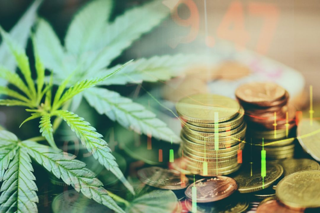 The Cannabis Craze: how green is the industry?