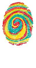 Zebra Insights Logo